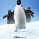 Movie Review – Disneynature's Penguins (2019)